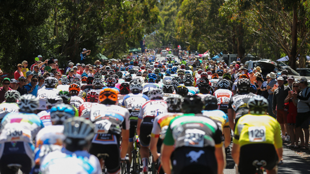 The men's elite peloton at the 2014 Mars Cycling Australia Road National Championships (Mark Gunter)