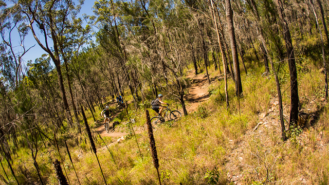 Atherton in Queensland is spending up big on mountain biking infrastructure for all skill levels (Tim Bardsley-Smith)