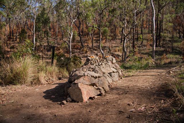 http://media.sbs.com.au/cyclingcentral/upload_media/7807_crocodile-640-lewis.jpg