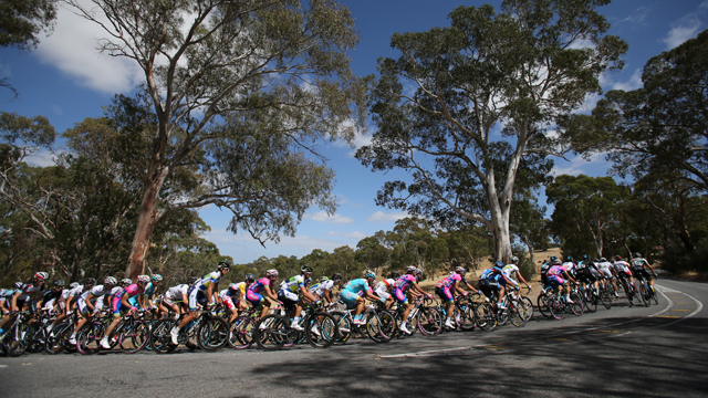 peloton_640_getty_1001427486