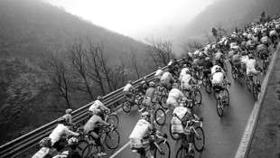 The peloton rides during 101st Milan-SanRemo (Getty)