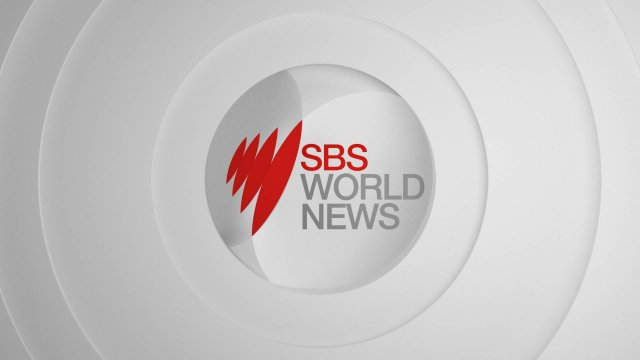 SBS World News 24 November 10:30 - part 1
