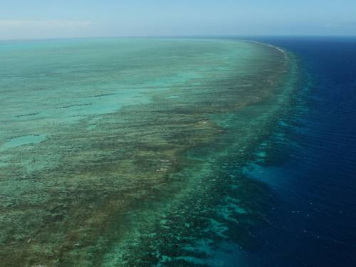 The Great Barrier Reef is not the only coastal area in need of protection