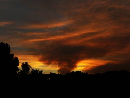A large 40,000 hectare bush fire is burning in the Warrumbungle National Park. Fires have destroyed more than 30 homes in New South Wales. (FILE:AAP)