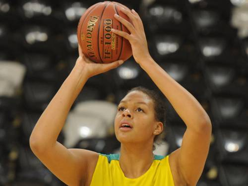 Fatigued Australian basketball star Liz Cambage has pulled out of the remainder of the WNBA season. (AAP)