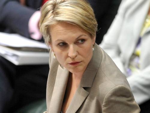 Ms Plibersek said Mr Slipper took the correct action in resigning. (AAP)