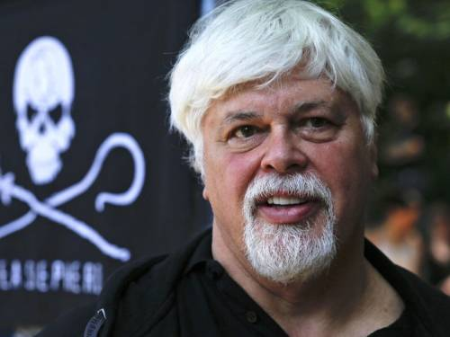 Paul Watson was arrested in May in Frankfurt on a warrant from Costa Rica, where he is wanted on charges stemming from a high-seas confrontation over shark finning in 2002. (AAP)