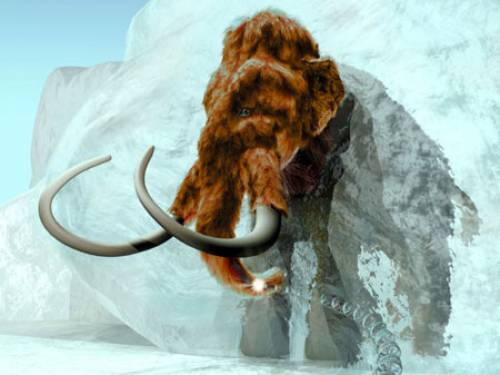 Woolly mammoths are thought to have died out 10,000 years ago. (AAP)