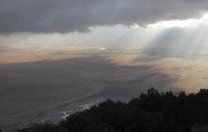 Early morning over Ngorongoro crater. This dawn's soundtrack was the throaty rumbling of a lion.