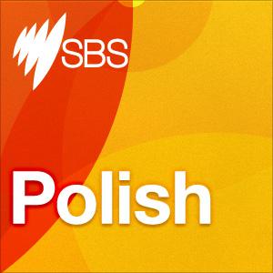 <![CDATA[Polish]]>