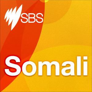 <![CDATA[Somali]]>