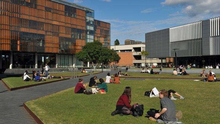University (AAP)