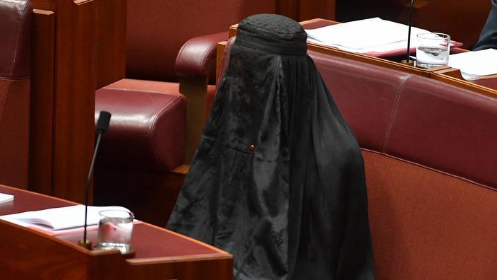 Pauline Hanson ma lona veli i le Senate
