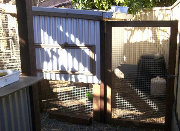 g19 chicken coop 2