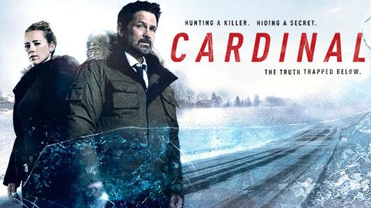 Bildresultat för cardinal serie